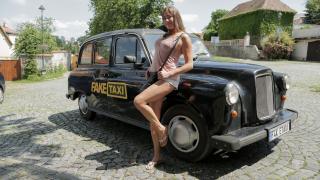 Elisa Tiger - My Way, All the Way
